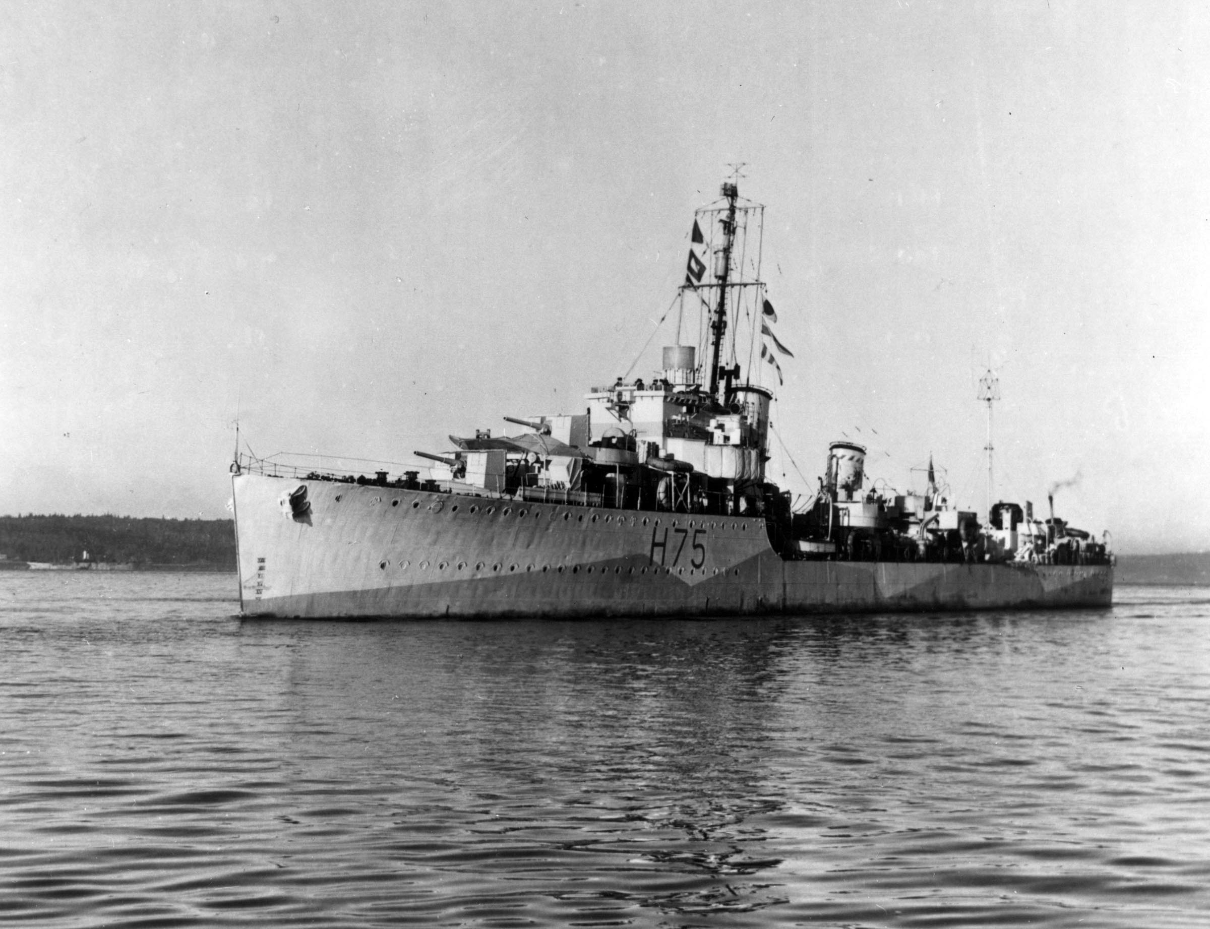 HMCS KOOTENAY (1st)